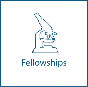 WIPO ReSearch Fellowship Icon